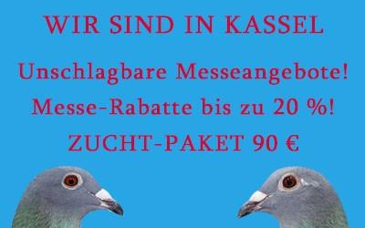 Wir sind in Kassel 2